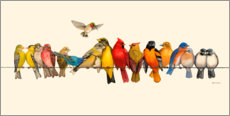 Canvas print  Bird Menagerie I - Wendy Russell