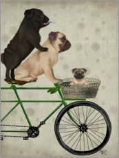 Canvas print  Pugs on Bicycle - Fab Funky