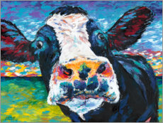 Canvas print  Curious Cow I - Carolee Vitaletti