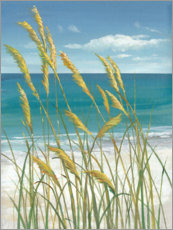 Acrylic print  Summer Breeze I - Tim O'Toole