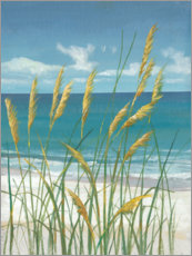 Canvas print  Summer Breeze II - Tim O'Toole