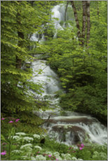Premium poster Waterfall with flowers in France