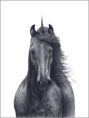 Canvas print  Black unicorn - Valeriya Korenkova