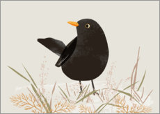 Foam board print  Blackbird - Sandy Lohß