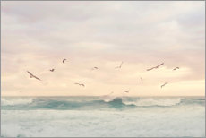 Aluminium print  Seagulls in the surf - Sisi And Seb