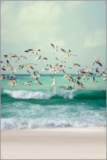 Premium poster  Seagulls on the beach - Art Couture