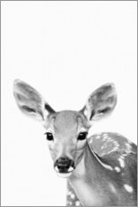 Premium poster  Young deer - Art Couture