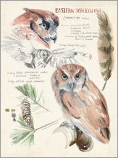 Premium poster  Owl and pine - Jennifer Parker