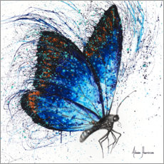 Premium poster Lone Shy Butterfly