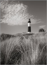 Premium poster  Big Sable Point Lighthouse I - Alan Majchrowicz