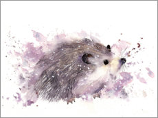 Premium poster  Little hedgehog - Rachel McNaughton