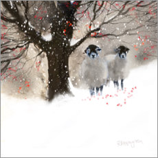 Canvas print  Winter sheep - Rachel McNaughton