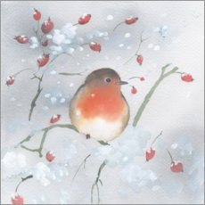 Premium poster  Robins in winter - Ray Shuell