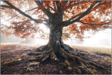 Premium poster  Magical tree in the fog - The Wandering Soul