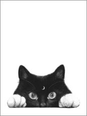 Premium poster  Night cat - Valeriya Korenkova