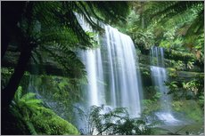 Gallery print  Russell Falls and tree ferns - Kevin Schafer