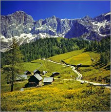 Gallery print  A pasture in the Dachstein Alps - Ric Ergenbright