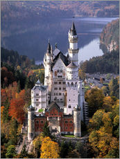 Wall sticker  Neuschwanstein and Alpsee in Bavaria, Germany - Ric Ergenbright