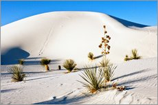 Gallery print  Dunes of White Sands - Bernard Friel