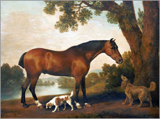Wall sticker  Horse and Two Dogs - George Stubbs