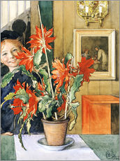 Wall sticker  Brita's Cactus, 1904 - Carl Larsson