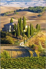 Wall sticker  Belvedere House in San Quirico - Terry Eggers