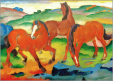 Canvas print  Red horses (Grazing Horses IV) - Franz Marc