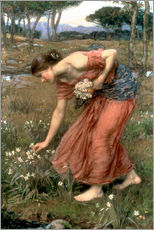 Wall sticker  Narcissus - John William Waterhouse