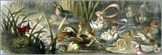 Gallery print  Water-Lilies and Water Fairies - Richard Doyle