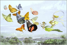 Wall sticker  The Fairy Queen's carriage - Richard Doyle