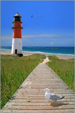 Wall sticker  The road to the lighthouse by the sea - Monika Jüngling