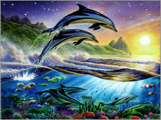 Gallery print  Atlantic dolphins - Adrian Chesterman