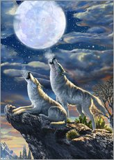 Wall sticker  Midnight Wolves - Adrian Chesterman