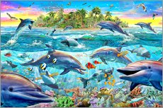 Gallery print  Dolphin Reef - Adrian Chesterman