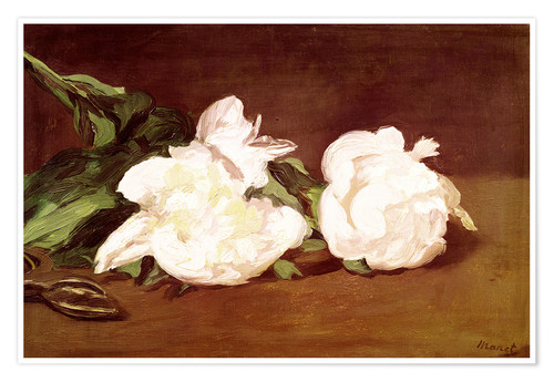 Premium poster Branch of White Peonies and Secateurs