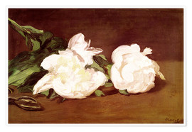 Premium poster  Branch of White Peonies and Secateurs - Edouard Manet