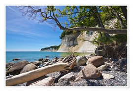 Premium poster  Baltic Sea coast on the island Ruegen (Germany) - Rico Ködder