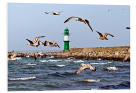 Foam board print  Mole with green lighthouse in the Baltic Sea Warnemünde - CAPTAIN SILVA