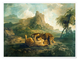 Premium poster Leopards at Play