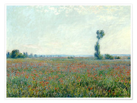 Premium poster  Field with poppies - Claude Monet