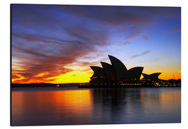 Aluminium print  Sydney Opera House in the evening light - David Wall