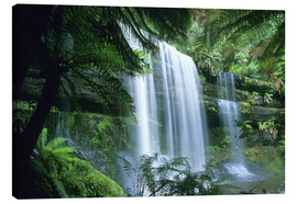 Canvas print  Russell Falls and tree ferns - Kevin Schafer