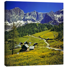Canvas print  A pasture in the Dachstein Alps - Ric Ergenbright