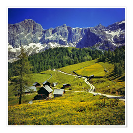 Premium poster  A pasture in the Dachstein Alps - Ric Ergenbright