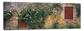 Canvas print  Climbing roses on old stone wall - Ric Ergenbright