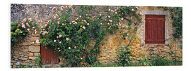 Foam board print  Climbing roses on old stone wall - Ric Ergenbright
