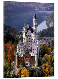 Acrylic print  Neuschwanstein and Alpsee in Bavaria, Germany - Ric Ergenbright
