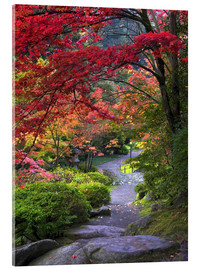 Acrylic print  Path in a Japanese garden - Janell Davidson