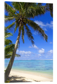 Acrylic print  Palm trees on the beach - Michael DeFreitas