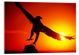 Acrylic print  A golden eagle flies at dawn - Dave Welling